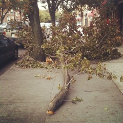 Pre-Hurricane Sandy. Queens Oct. 2012. Photo by Michele Witchipoo.